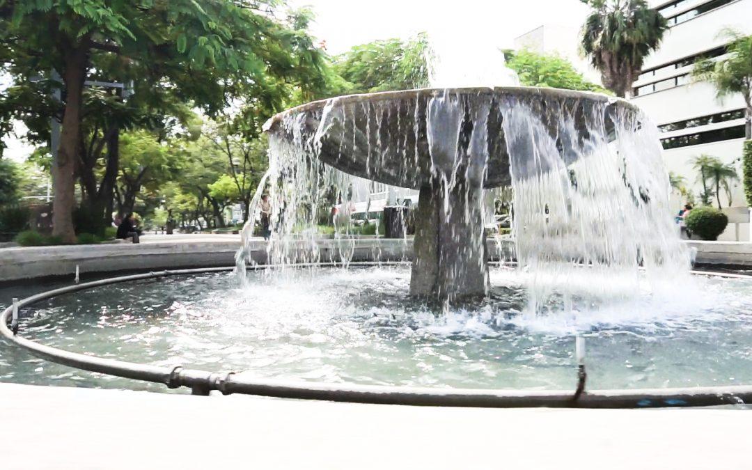 Vista la Zona CHapultepec